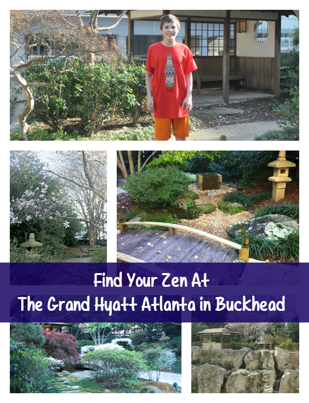 Find Your Zen At The Grand Hyatt Atlanta in Buckhead pin