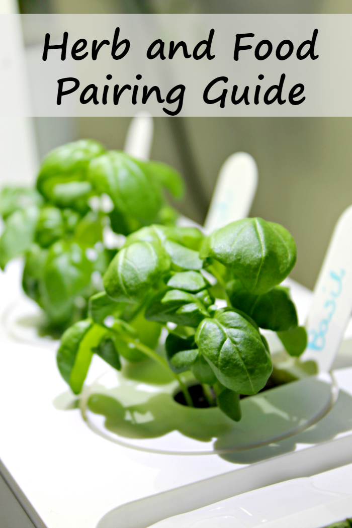 Do you love cooking with fresh herbs but are unsure of how to use them in cooking? Try this A Simple Guide For cooking with fresh herbs