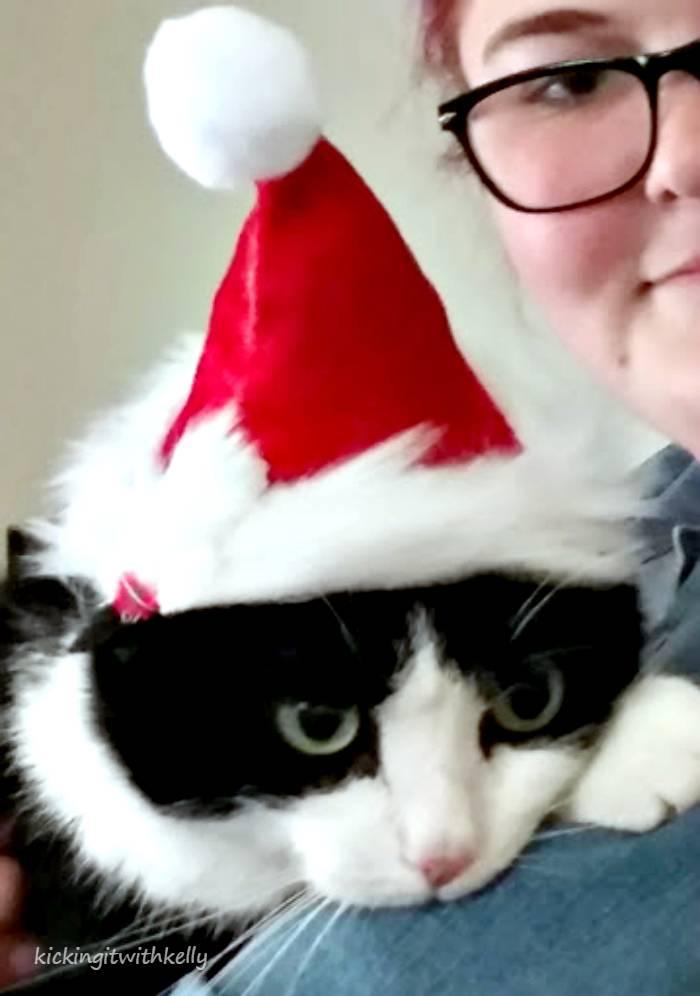 DIY Pet Santa Hat Tutorial hazel