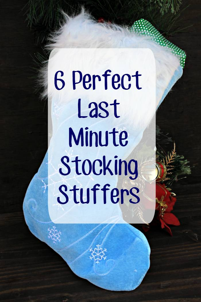 I love shopping for the holidays! One of my favorite things to buy are the gifts for everyone's stocking! If you haven't bought yours, here are six perfect last minute stocking stuffers for the grown ups on your list.