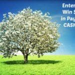 Spring 2017 $25 PayPal Cash Giveaway
