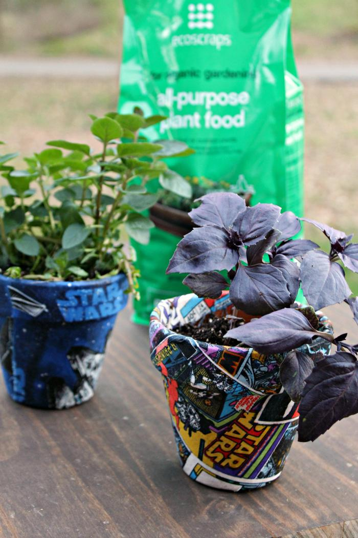 Are you ready to plant that spring garden? Be sure to use the all natural soils and plant foods from @EcoScraps from your local @Walmart. Their #BadFoodGoneGood philosophy recycles food scraps into organic and sustainable lawn and garden products.