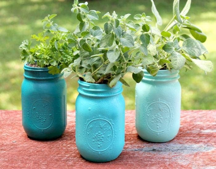 DIY Ombre Painted Mason Jar Planters completed