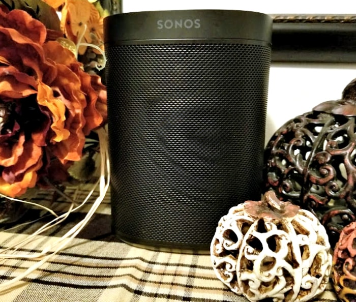 The New Sonos One From Best Buy 2