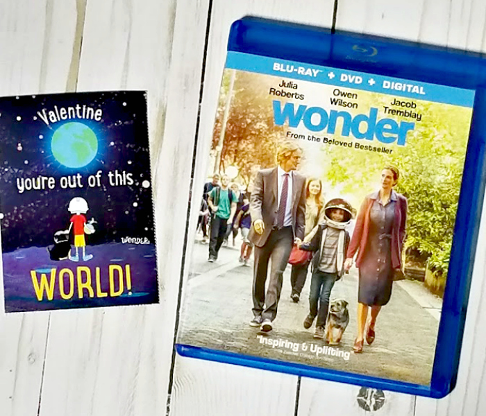 You Will Be Inspired When You See Wonder The Movie!