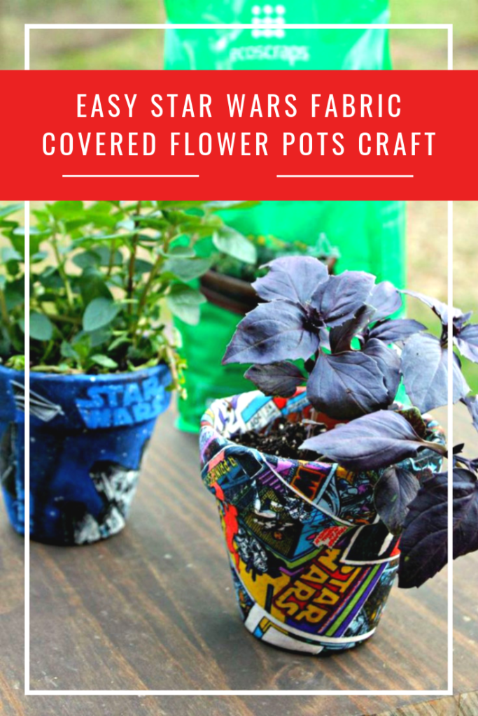 We wanted to brighten up our indoor garden without spending too much. So grab the kids and make this easy Star Wars fabric covered flower pots craft idea!