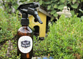 DIY Essential Oils Bug Repellent Spray